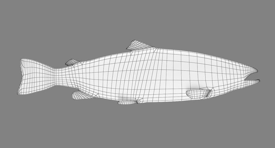 Atlantischer Lachs royalty-free 3d model - Preview no. 8