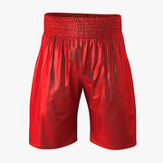 Boxing Shorts 3d model