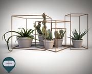 obiekt kaktusowy A 3d model