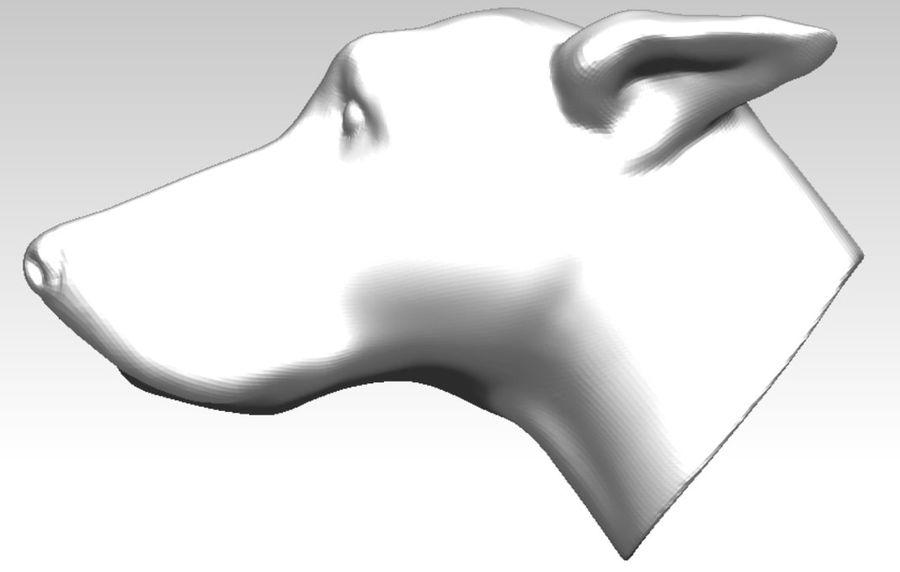 Tazı yarışı köpek kafası royalty-free 3d model - Preview no. 3