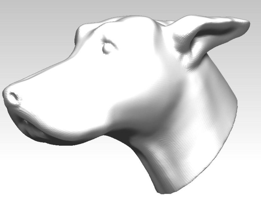 Tazı yarışı köpek kafası royalty-free 3d model - Preview no. 1