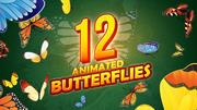 Pakket met 12 geanimeerde vlinders 3d model