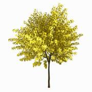 Árvore # 2 3d model