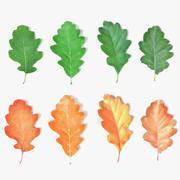 Oak Leaves 3d model