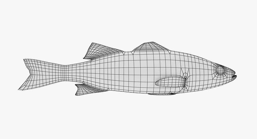 Seabass royalty-free 3d model - Preview no. 7