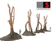Drzewo liściaste dżungli 16 tys 3d model