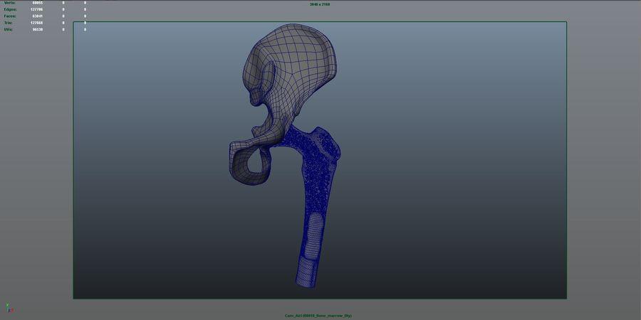 Костный мозг royalty-free 3d model - Preview no. 7