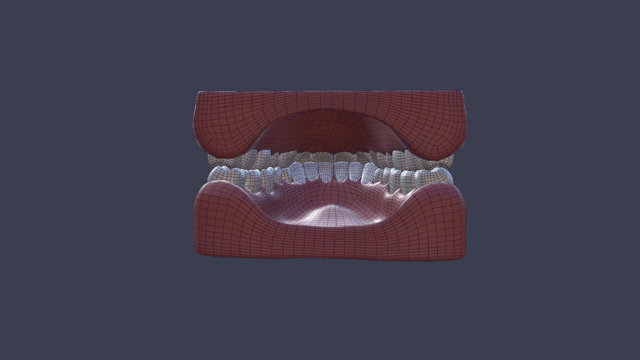 Jaw royalty-free 3d model - Preview no. 6