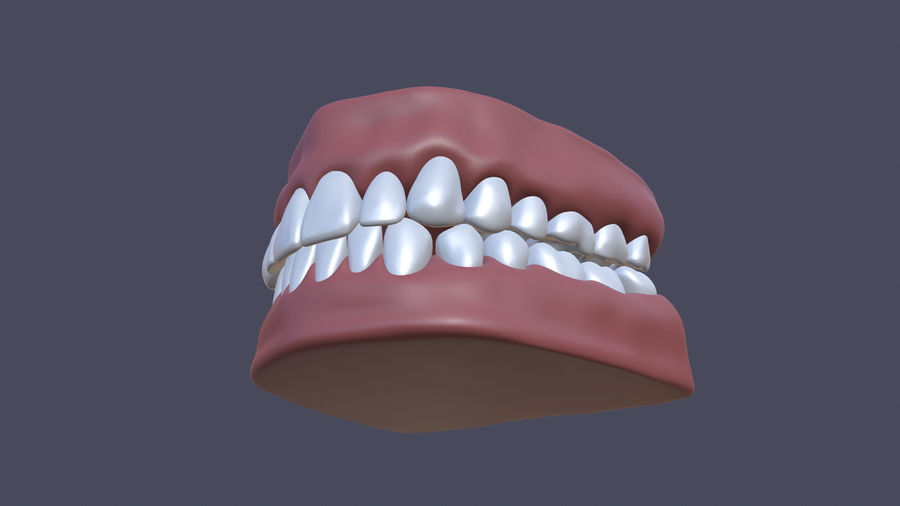 Jaw royalty-free 3d model - Preview no. 8