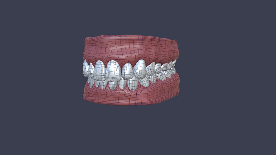 Jaw royalty-free 3d model - Preview no. 3