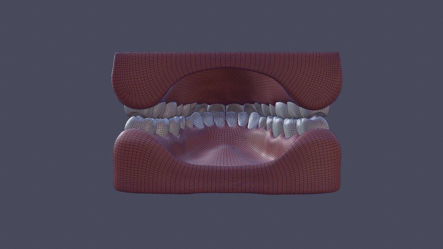 Jaw royalty-free 3d model - Preview no. 7
