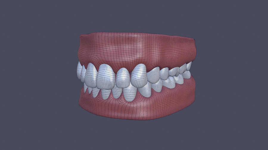 Jaw royalty-free 3d model - Preview no. 4