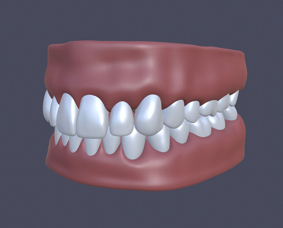 Jaw royalty-free 3d model - Preview no. 1