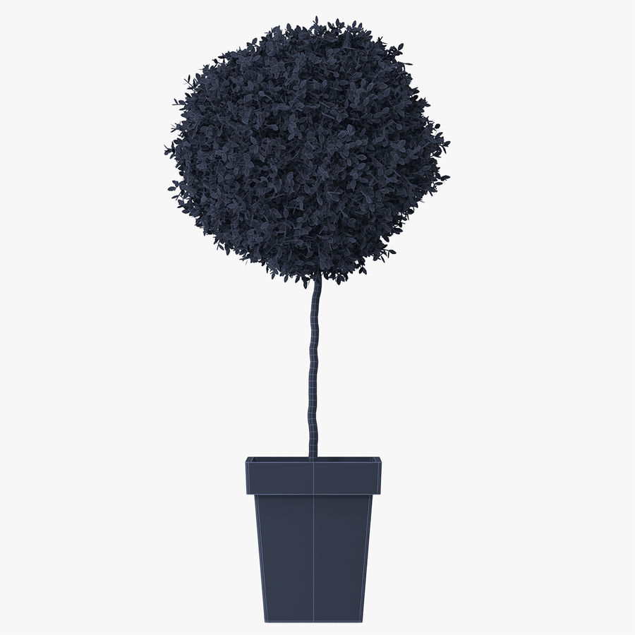 Plant Tree royalty-free 3d model - Preview no. 10