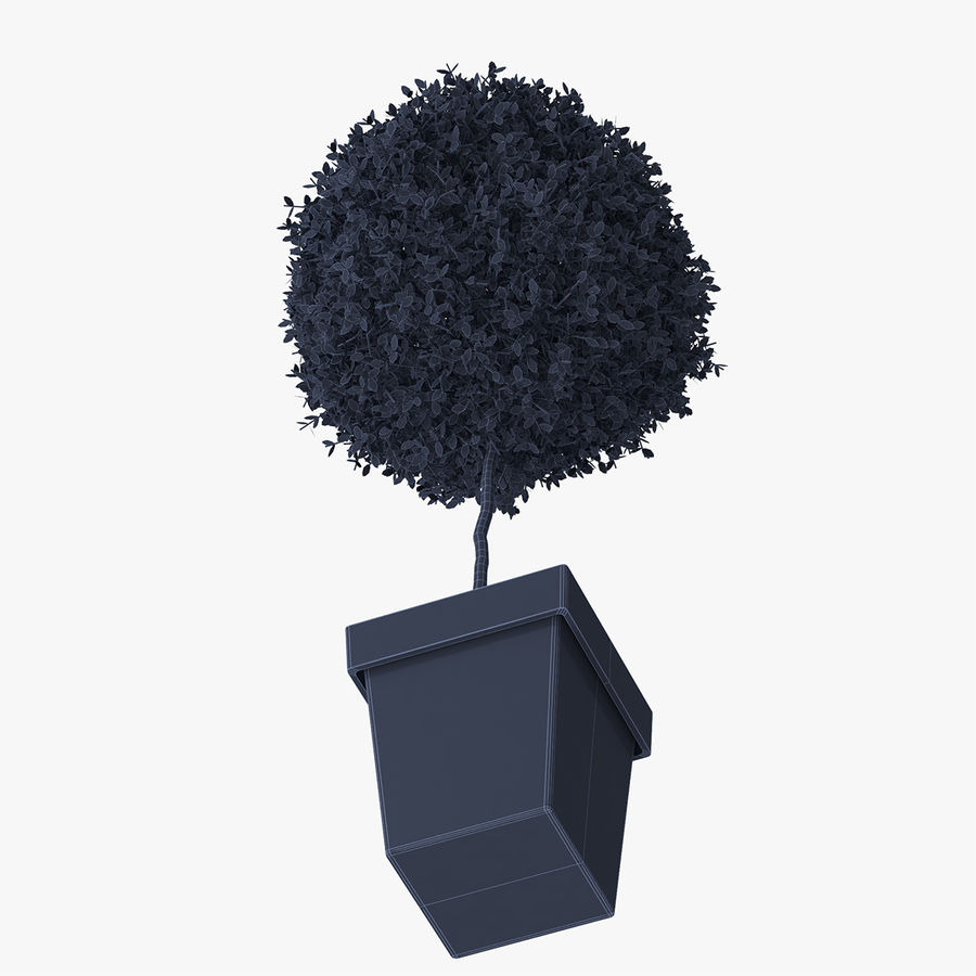 Plant Tree royalty-free 3d model - Preview no. 11