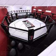 UFCホール 3d model