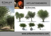 olijfboom vol4 3d model