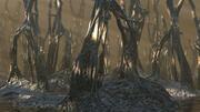 Les zones humides de la forêt de Liane 3d model