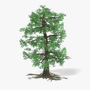 Big Oak 3d model