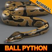 Ball Python (Normal) 3d model