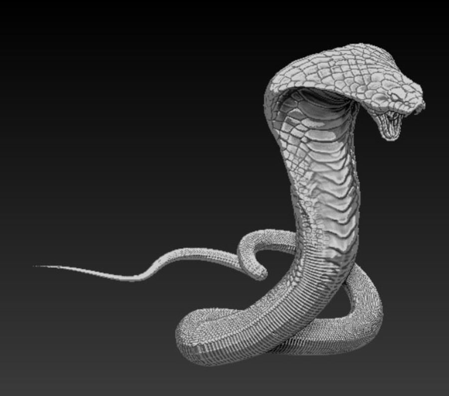 Cobra hög poly royalty-free 3d model - Preview no. 1