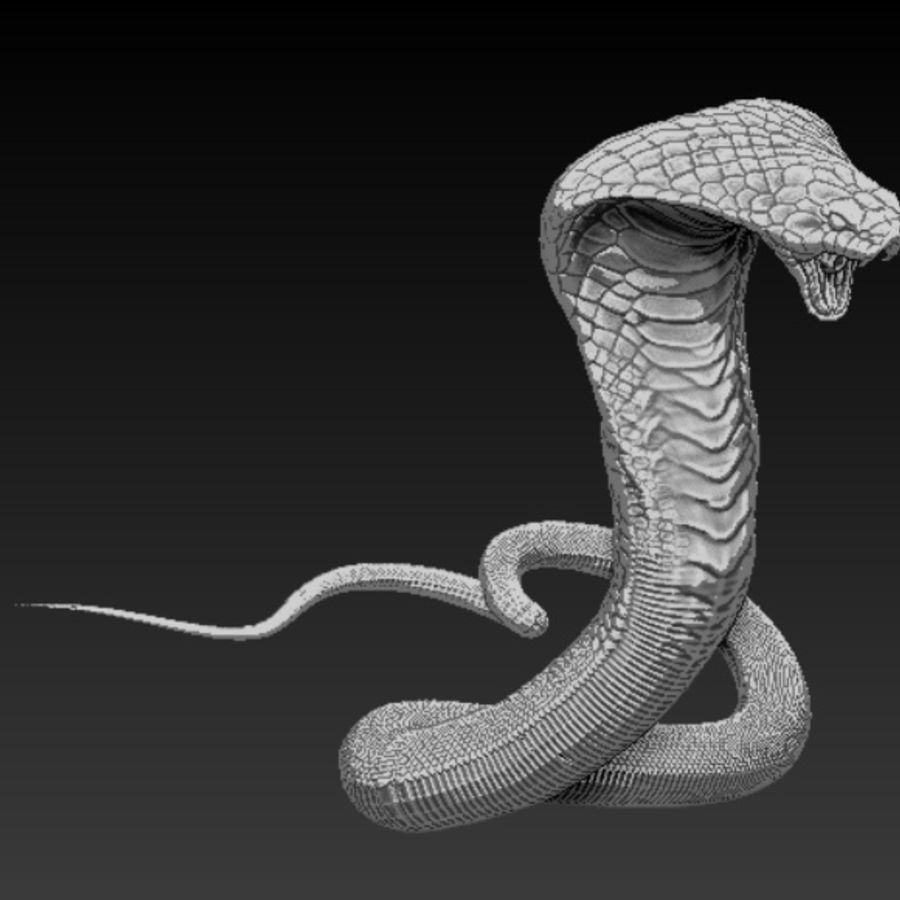 Cobra high poly royalty-free 3d model - Preview no. 1