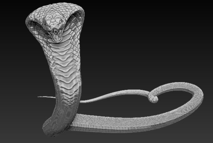 Cobra hög poly royalty-free 3d model - Preview no. 2