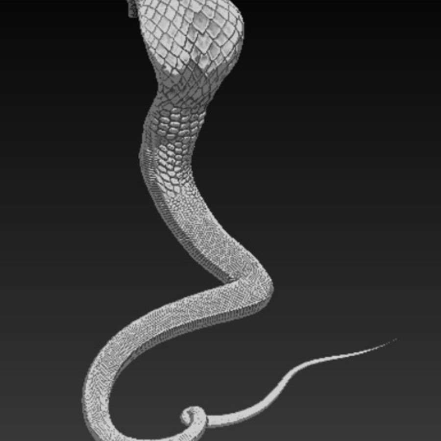 Cobra high poly royalty-free 3d model - Preview no. 4