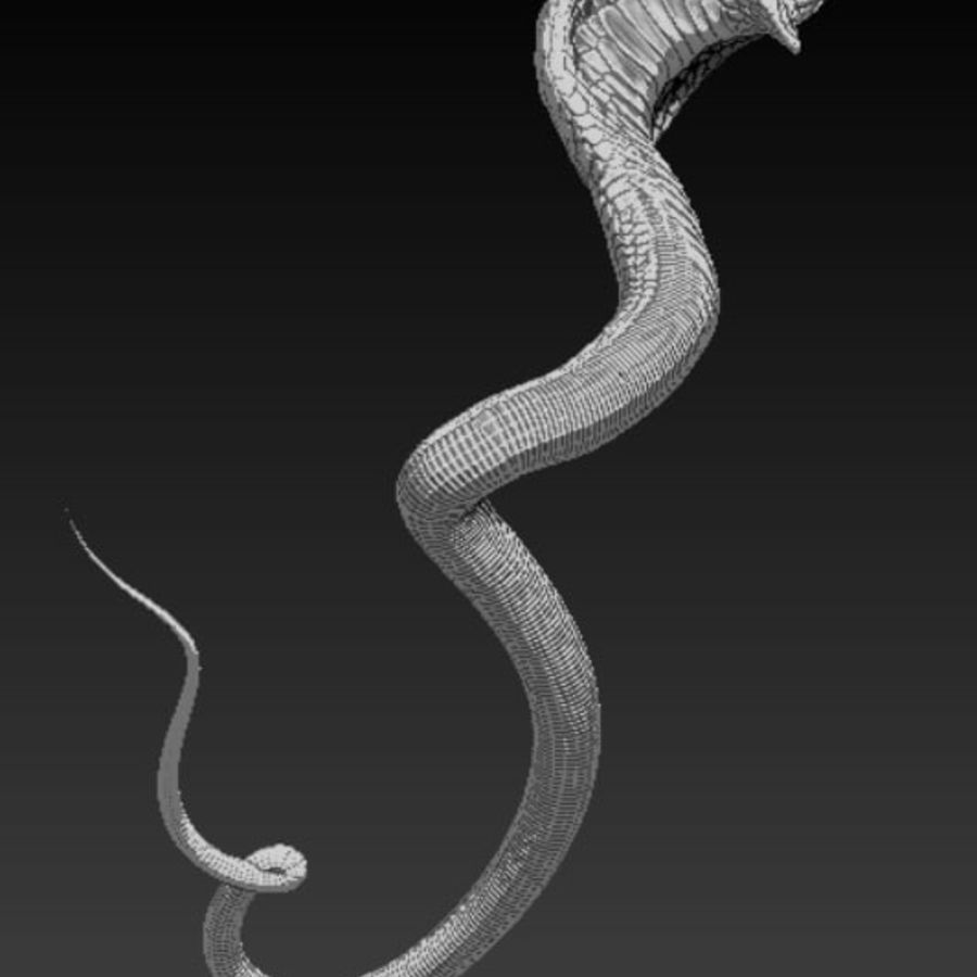Cobra hög poly royalty-free 3d model - Preview no. 5