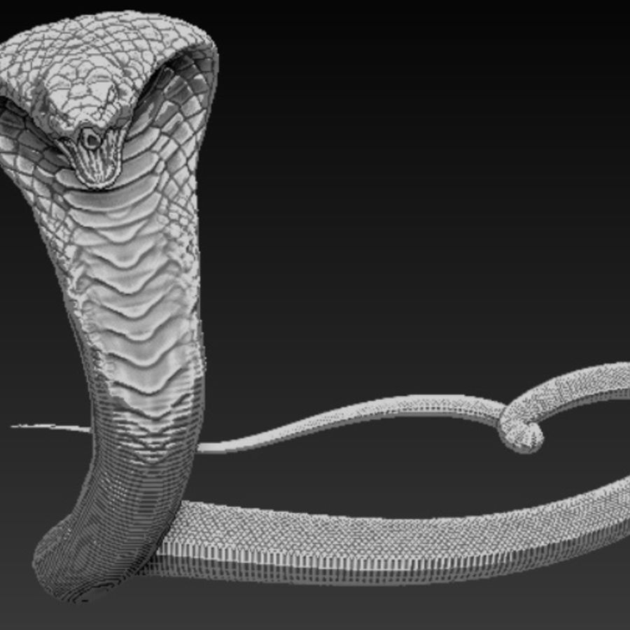 Cobra high poly royalty-free 3d model - Preview no. 2
