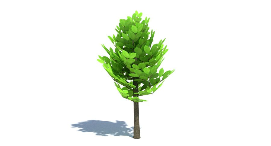 Cartoon Tree Small royalty-free 3d model - Preview no. 6