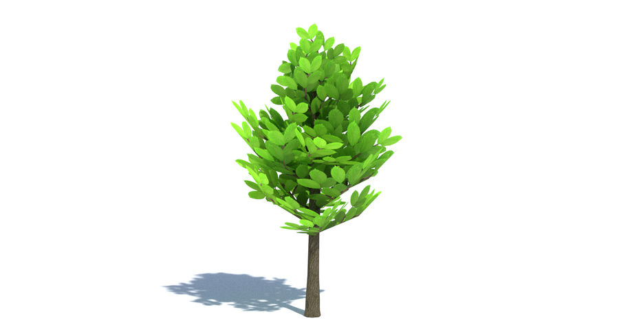 Cartoon Tree Small royalty-free 3d model - Preview no. 3