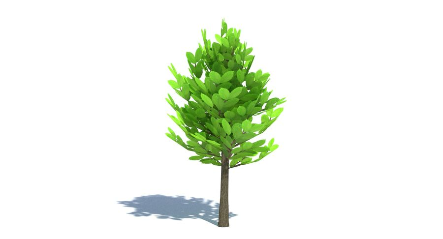 Cartoon Tree Small royalty-free 3d model - Preview no. 4
