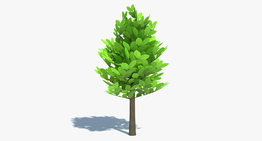 Cartoon Tree Small royalty-free 3d model - Preview no. 2
