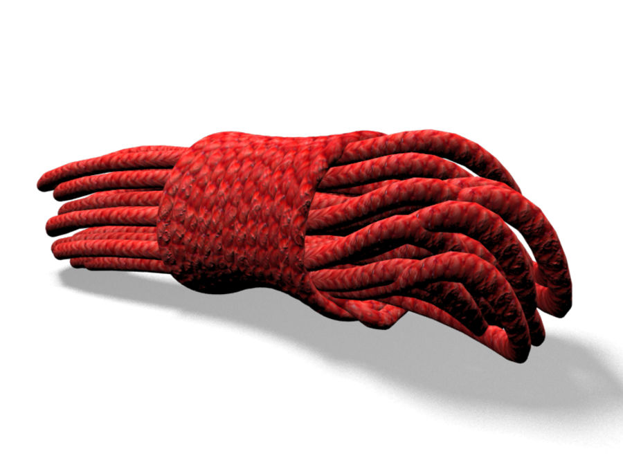Rope Red royalty-free 3d model - Preview no. 6