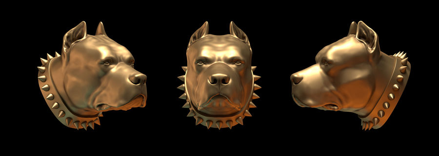 head pit bull royalty-free 3d model - Preview no. 1
