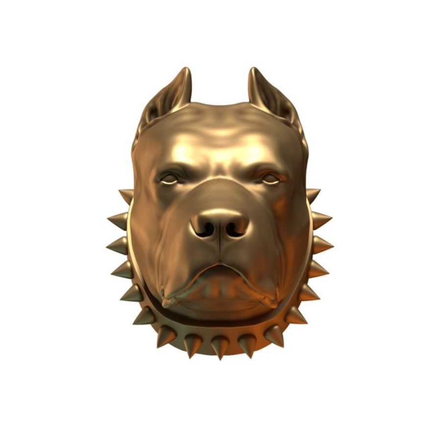 head pit bull royalty-free 3d model - Preview no. 2