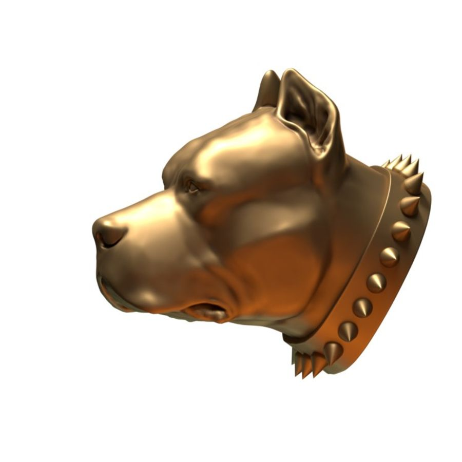 head pit bull royalty-free 3d model - Preview no. 4