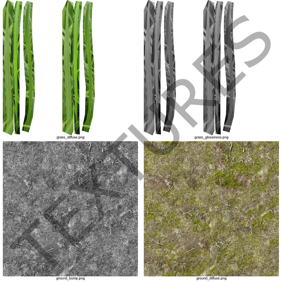 Ryegrass royalty-free 3d model - Preview no. 14