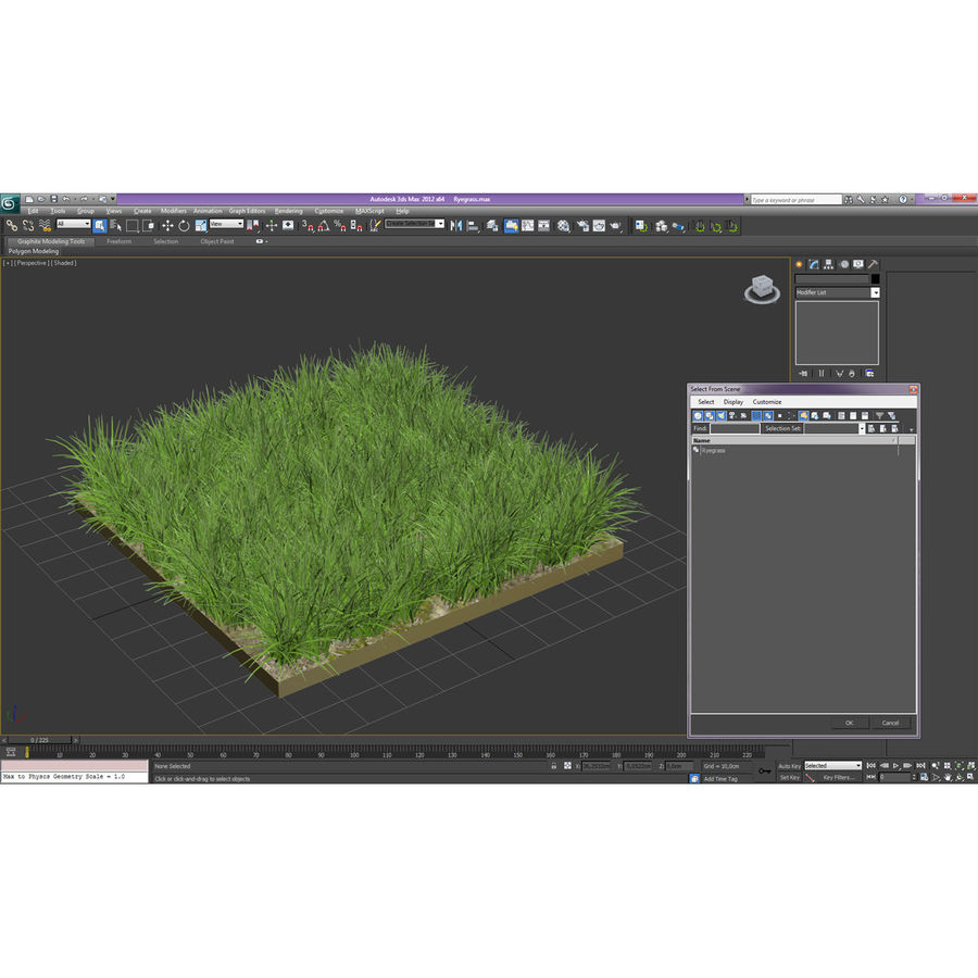 Ryegrass royalty-free 3d model - Preview no. 15