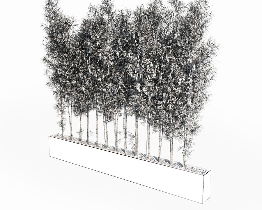 Bamboo Trees 2 royalty-free 3d model - Preview no. 11