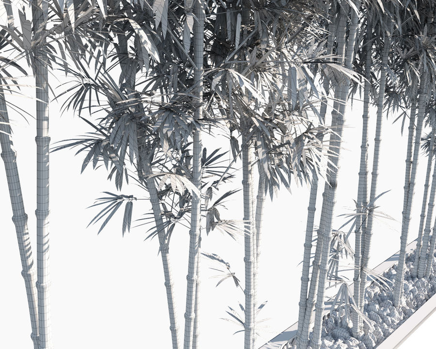 Bamboo Trees 2 royalty-free 3d model - Preview no. 14