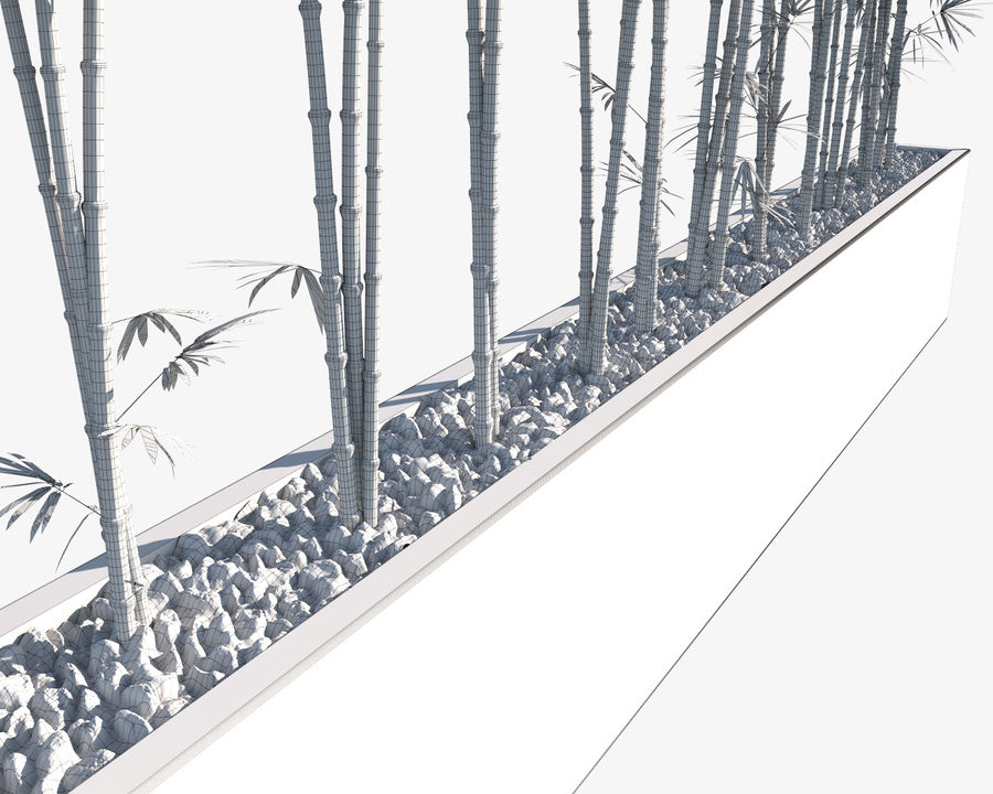 Bamboo Trees 2 royalty-free 3d model - Preview no. 13