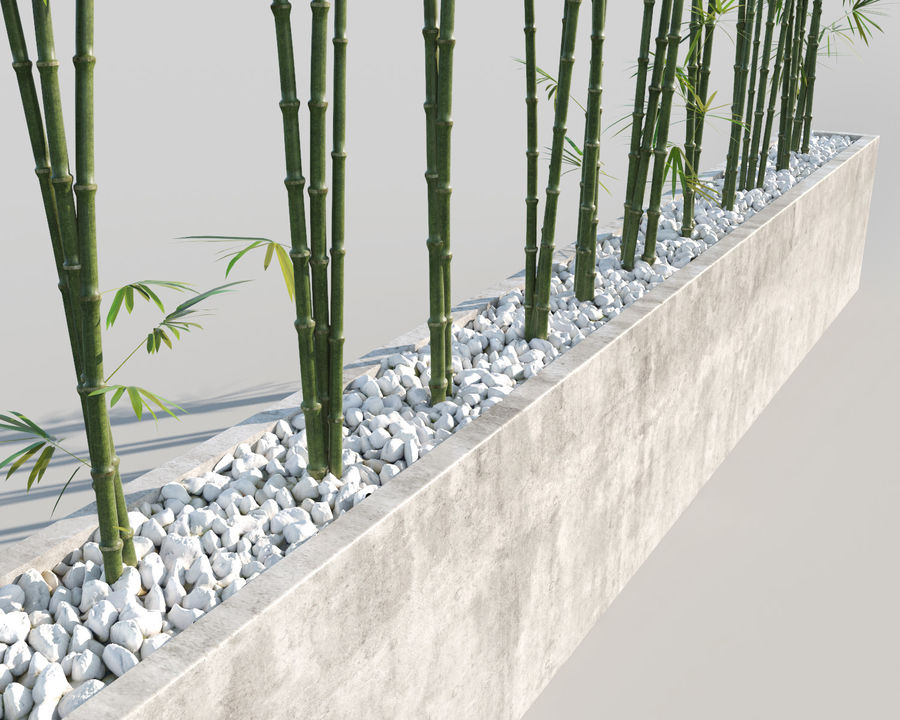 Bamboo Trees 2 royalty-free 3d model - Preview no. 6