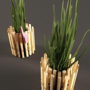 Aus Wäscheklammern in einen Topf pflanzen 3d model