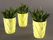 黄色の鍋に植物サボテン 3d model