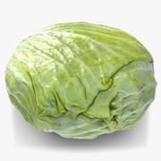 Cabbage 1 3d model
