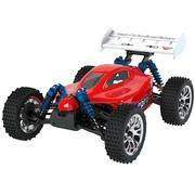 Troyan Pro Rc Buggy Car 3d model