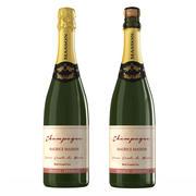 Botella de champagne modelo 3d