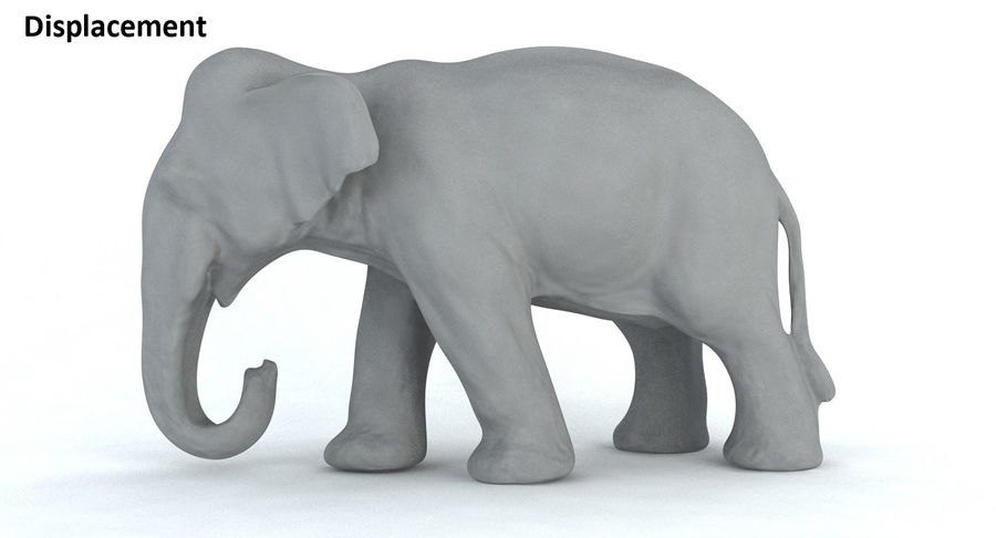 Elephant royalty-free 3d model - Preview no. 14